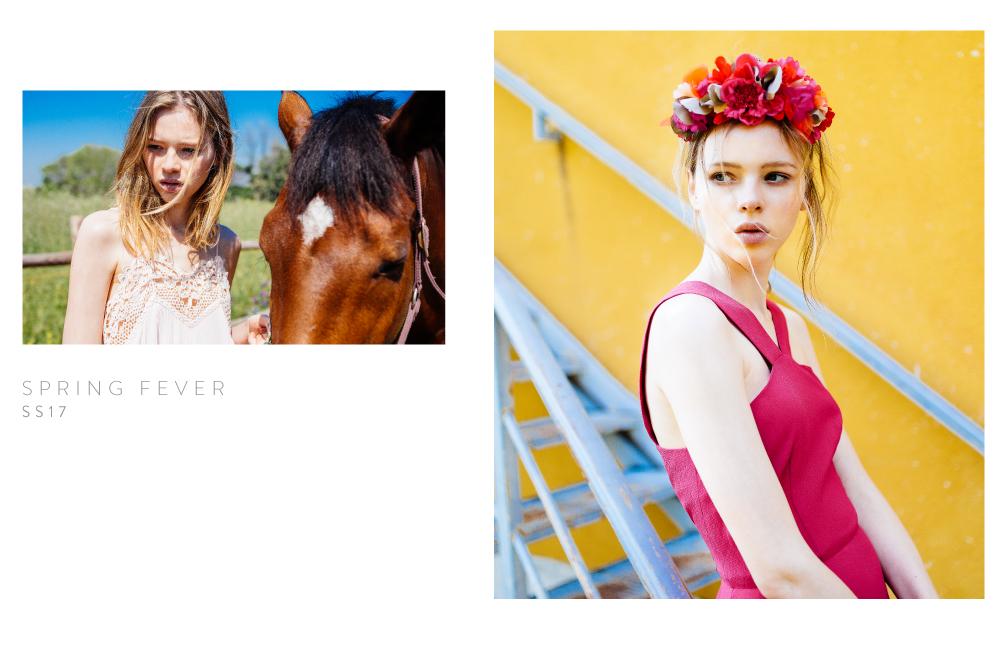 Spring Fever - Wild       Pony
